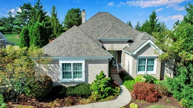 6143 E Longview Drive, East Lansing, MI 48823 (MLS #250697) :: Real Home Pros
