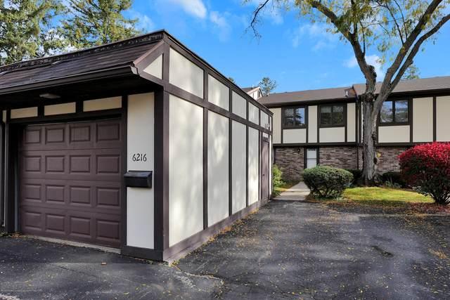 6216 Captains Way, East Lansing, MI 48823 (MLS #250858) :: Real Home Pros