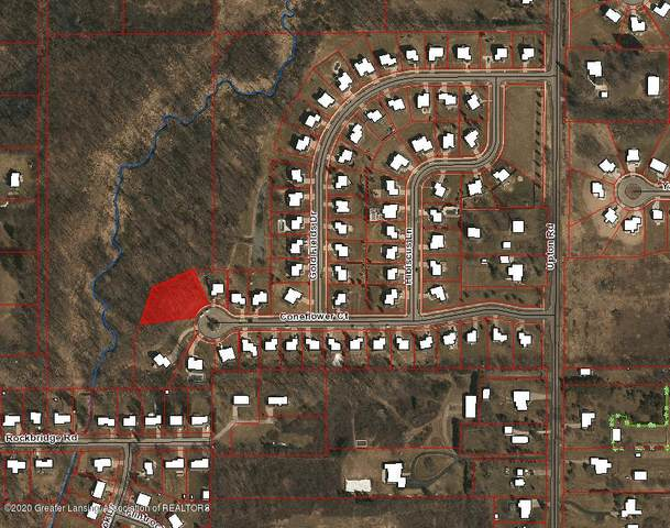 7251 Coneflower Court, Grand Ledge, MI 48837 (MLS #250990) :: Home Seekers