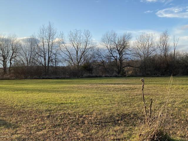 V/L Mohican Trail, Owosso, MI 48867 (MLS #251480) :: Real Home Pros