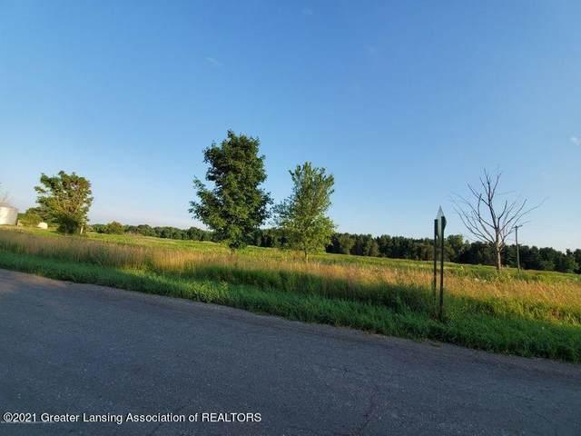 B Krantz Road, Holt, MI 48842 (MLS #252945) :: Real Home Pros