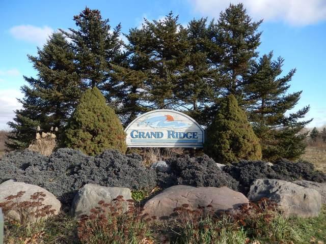 27 Cedar Ridge Drive, Portland, MI 48875 (MLS #254705) :: Home Seekers