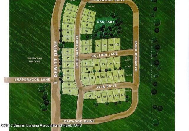 1132 River Oaks Drive, Dewitt, MI 48820 (MLS #222066) :: PreviewProperties.com