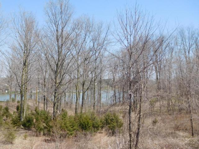 0 Lakeside, Perrinton, MI 48871 (MLS #223401) :: Real Home Pros