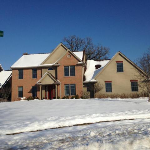 601 Windy Rush Lane, Dewitt, MI 48820 (MLS #223438) :: Real Home Pros