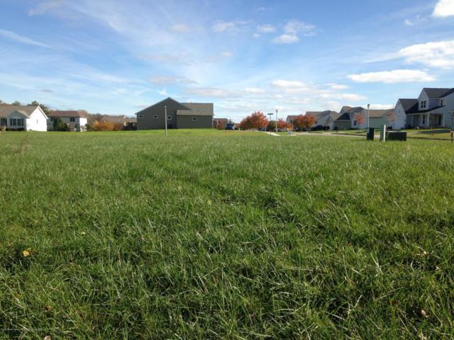 3934 Carnaby Drive, Lansing, MI 48906 (MLS #224204) :: Real Home Pros
