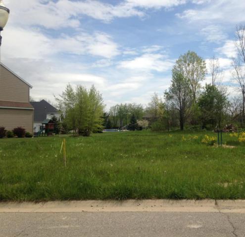 1553 Sanborn Drive, Dewitt, MI 48820 (MLS #224207) :: Real Home Pros