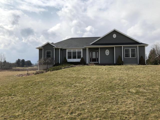 6920 Shepardsville Road, Laingsburg, MI 48848 (MLS #224896) :: Real Home Pros