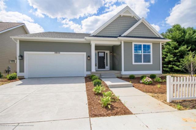 3843 Fossum Lane, Okemos, MI 48864 (MLS #225903) :: Real Home Pros