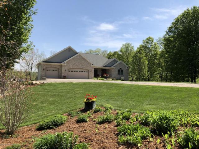 9723 Lakeside Drive, Perrinton, MI 48871 (MLS #226293) :: Real Home Pros