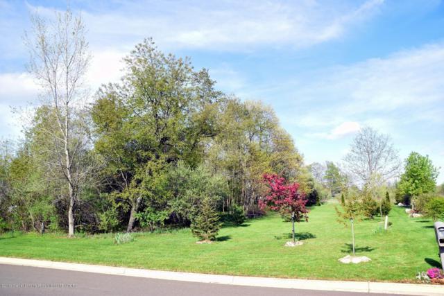 0 Cinnamon Lane, Leslie, MI 49251 (MLS #227715) :: Real Home Pros