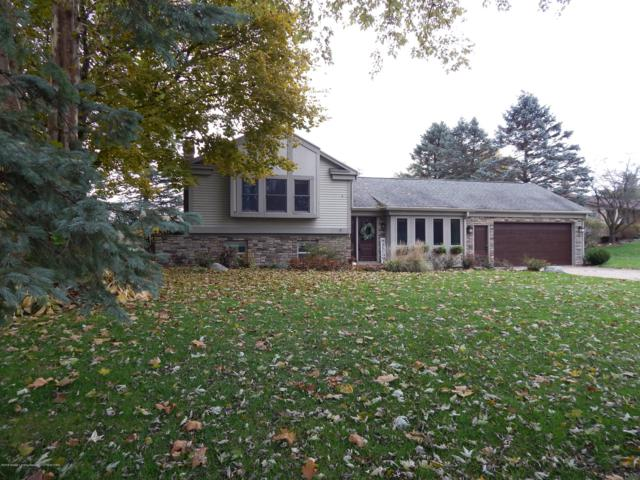 9343 W Scenic Lake Drive, Laingsburg, MI 48848 (MLS #231842) :: Real Home Pros