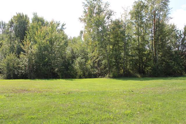 Lot 53 Doe Pass, Lansing, MI 48917 (MLS #233010) :: Real Home Pros