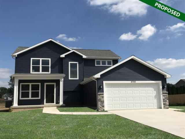 13890 Bauerle Road, Dewitt, MI 48820 (MLS #233038) :: Real Home Pros