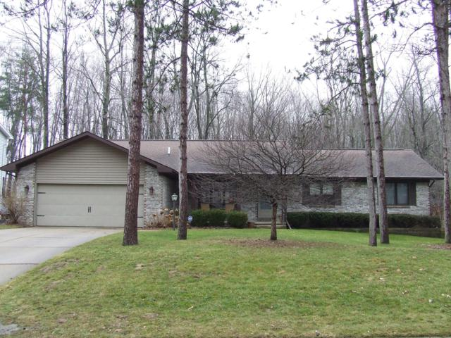 13255 White Pine Drive, Dewitt, MI 48820 (MLS #234715) :: Real Home Pros