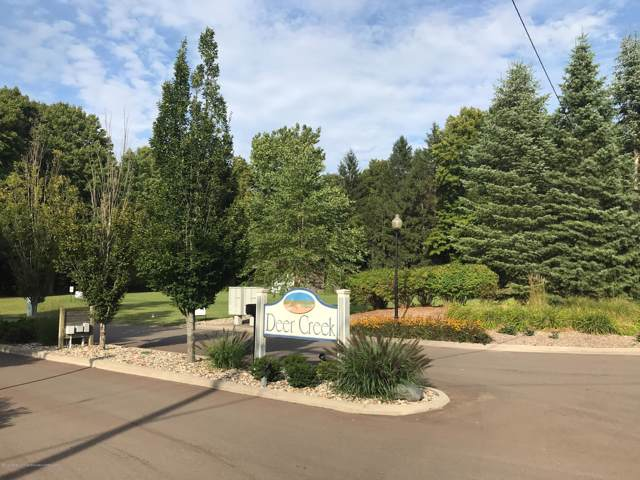 13711 Deer Creek Drive, South Haven, MI 49090 (MLS #235497) :: Real Home Pros