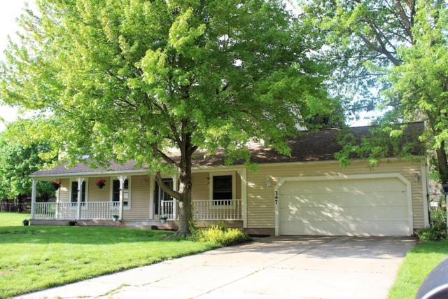 347 Tanbark, Dimondale, MI 48821 (MLS #236631) :: Real Home Pros