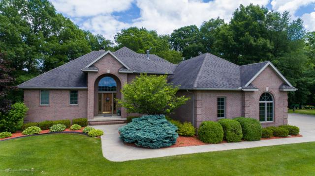 8446 Carriage Lane, Portland, MI 48875 (MLS #237483) :: Real Home Pros