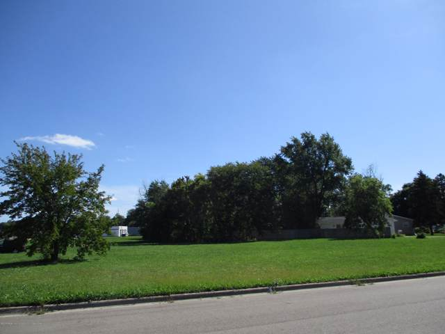917 N Us-127, St. Johns, MI 48879 (MLS #240824) :: Real Home Pros