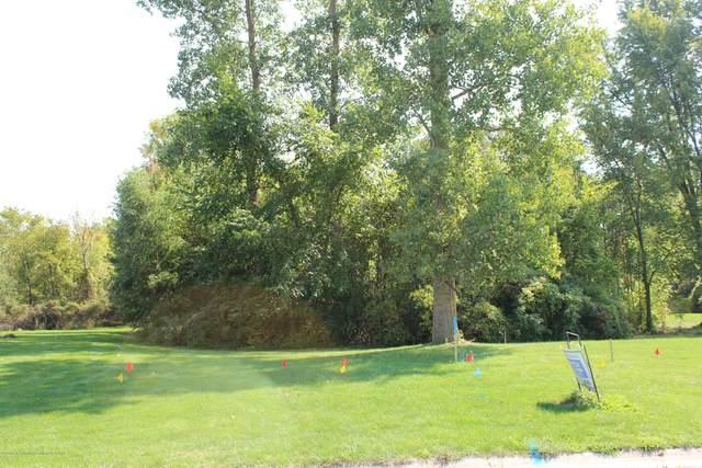 Lot 47 Doe Pass, Lansing, MI 48917 (MLS #241054) :: Real Home Pros
