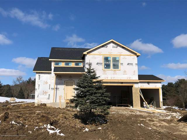 6885 W Galway Circle, Dimondale, MI 48821 (MLS #242986) :: Real Home Pros
