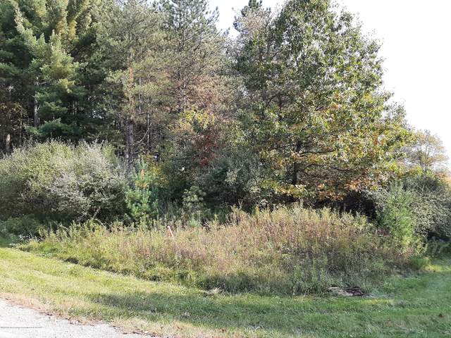 0 Blue Water Way, Perry, MI 48872 (MLS #250538) :: Real Home Pros
