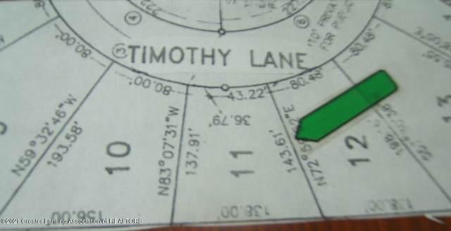 5521 Timothy Lane, Bath, MI 48808 (MLS #252594) :: Home Seekers