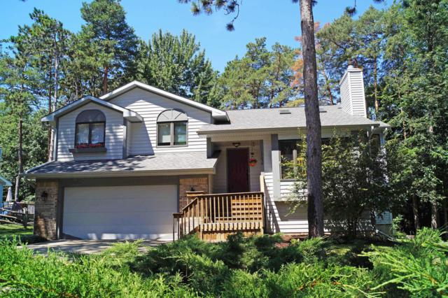 13256 White Pine Drive, Dewitt, MI 48820 (MLS #228148) :: Real Home Pros
