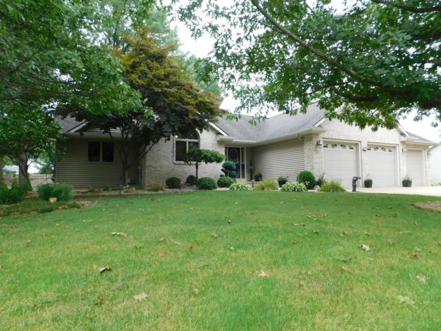 8502 River Bend Drive, Portland, MI 48875 (MLS #229890) :: Real Home Pros