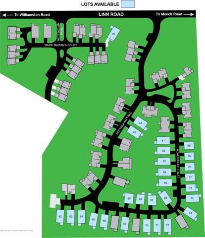 1516 E Nottingham Forest Trail, Williamston, MI 48895 (MLS #239277) :: Real Home Pros
