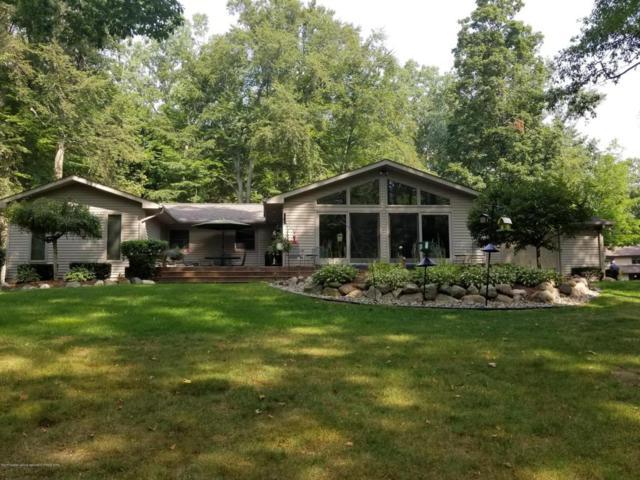 4225 Driftwood Drive, Dewitt, MI 48820 (MLS #218679) :: PreviewProperties.com