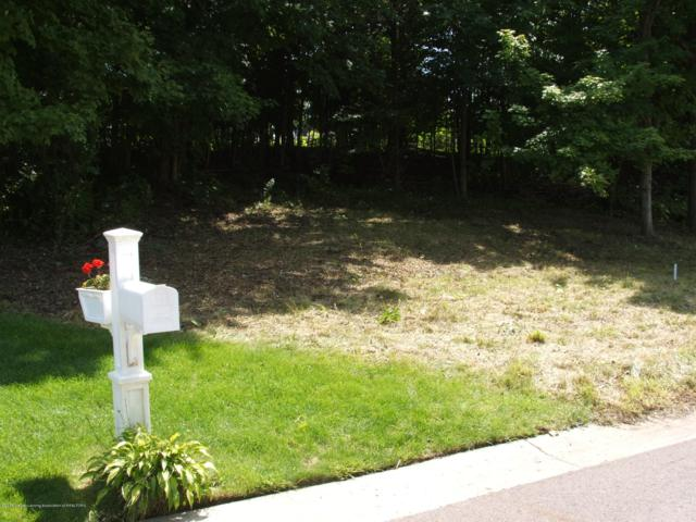 Lot 18 Canyon Trail, Lansing, MI 48917 (MLS #222301) :: Real Home Pros