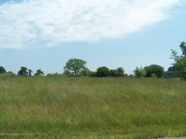 1966 Meadow Hills Drive, Eaton Rapids, MI 48827 (MLS #78643) :: Real Home Pros
