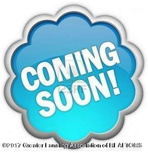 13402 N Wheaton Road, Grand Ledge, MI 48837 (MLS #219211) :: PreviewProperties.com