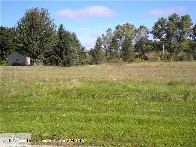 00 W Galway Lot 5 Circle, Dimondale, MI 48821 (MLS #220651) :: PreviewProperties.com