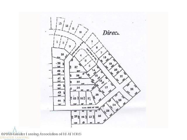 1479 Tessa Drive, Dansville, MI 48819 (MLS #226804) :: Real Home Pros