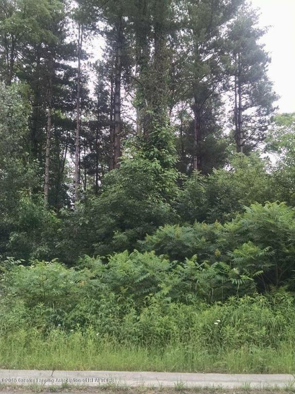 Lot 19 Highland Court, Dimondale, MI 48821 (MLS #227472) :: Real Home Pros