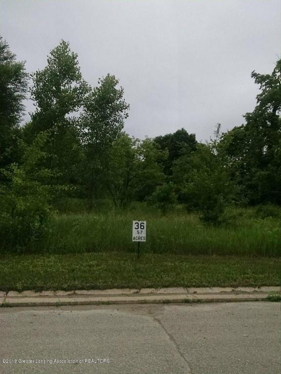Lot 36 Highland Court, Dimondale, MI 48821 (MLS #227474) :: Real Home Pros