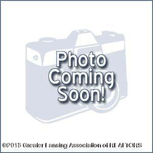 6060 Columbia Street, Haslett, MI 48840 (MLS #231498) :: Real Home Pros