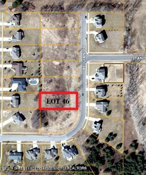 Lot 46 Belgian Drive, Lansing, MI 48906 (MLS #237712) :: Real Home Pros