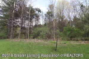 2670 Navigator Lane, Lansing, MI 48911 (MLS #242569) :: Real Home Pros