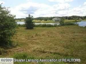 717 W Windward Way, Perry, MI 48872 (MLS #249529) :: Real Home Pros