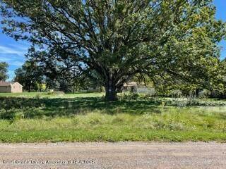 0 Meadowlawn, Fowlerville, MI 48836 (MLS #259952) :: Home Seekers
