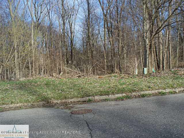 Lot 118 Williamsburg Road, Lansing, MI 48917 (MLS #219433) :: Real Home Pros