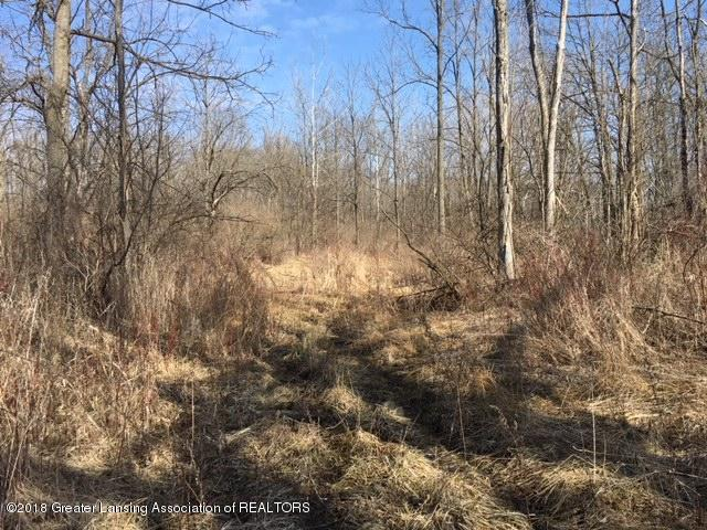 0 S Waverly Road, Eaton Rapids, MI 48827 (MLS #224991) :: Real Home Pros