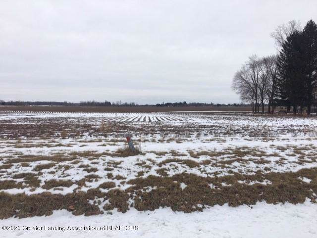 Lot 62 Looking Glass Brook, Grand Ledge, MI 48837 (MLS #243780) :: Real Home Pros