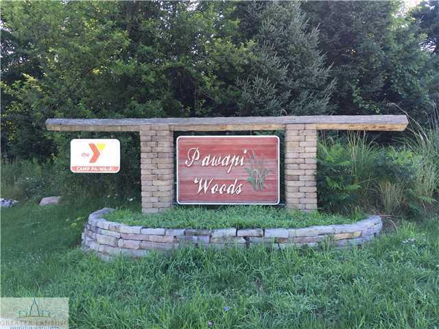 3101 Pawapi Lane (Lot A), Williamston, MI 48895 (MLS #84121) :: Real Home Pros
