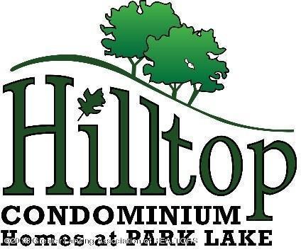 6200 Hilltop Ct #9, Bath, MI 48808 (MLS #224800) :: Real Home Pros