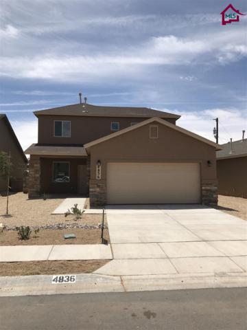 4836 Sonoran Ave, Las Cruces, NM 88012 (MLS #1701495) :: Steinborn & Associates Real Estate