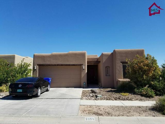 3655 Santa Cecilia Ave, Las Cruces, NM 88012 (MLS #1701859) :: Steinborn & Associates Real Estate